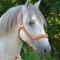 Licol Cuir Sellerie équestre Jollet Atelier cheval 3